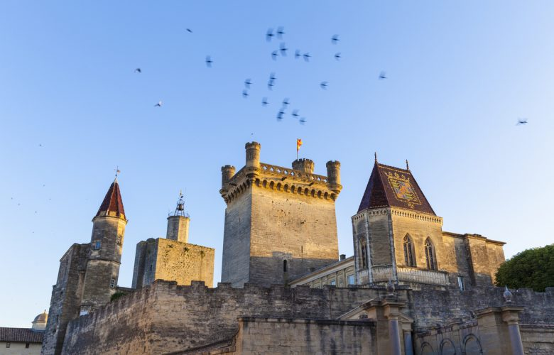 Uzes, France - July 04, 2016: Duke's Caste, called the Duchy in golden late afternoon light is the main attraction of Uzes. Uzes is situated in the Department Gard in the Region Languedoc-Roussillon. A swarm of swift passing by.